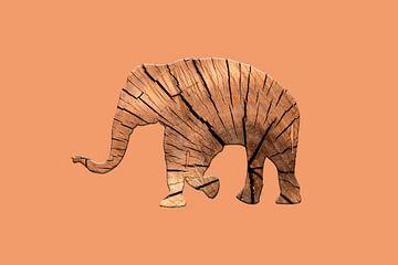 Elephant bois sur Catherine Fortin