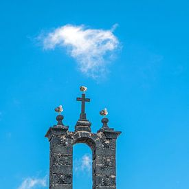 Historisch kerkboogje met kruis bezet door drie meeuwen van Harrie Muis
