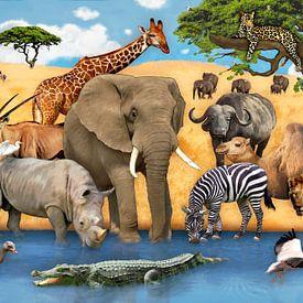 Tiere in Afrika von Marion Krätschmer