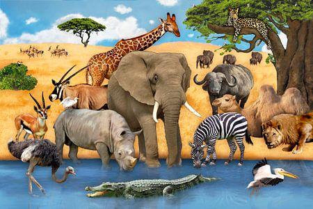 Tiere in Afrika van Marion Krätschmer