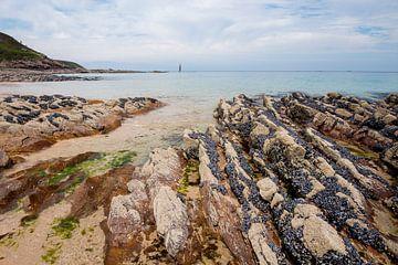 Mosselen op het strand in Bretagne van Rob IJsselstein