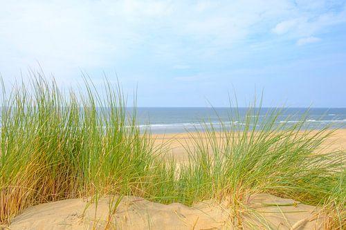 Uitzicht vanaf de duinen op het strand van de Noordzee van Sjoerd van der Wal