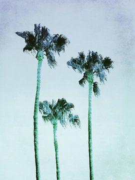 PASTEL PALM TREES no3 van Pia Schneider
