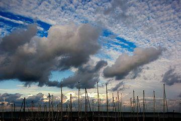 Jachthaven Willemstad van Bas van der Burgt
