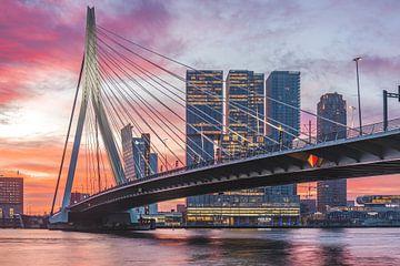 Magical morning Erasmusbrug Rotterdam 2 van Midi010 Fotografie