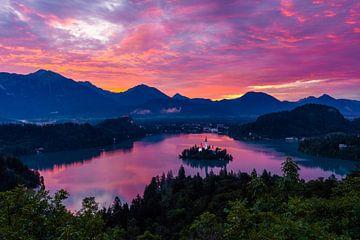 Prachtige zonsopkomst over het meer van Bled van Mark Pelder