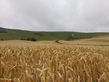 Een korenveld bij de long men van Wilbert Van Veldhuizen