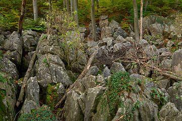 Felsenmeer bei Hemer, Sauerland, wild zerklüftete Felsen unter alten Buchen,  NRW, Deutschland. von wunderbare Erde