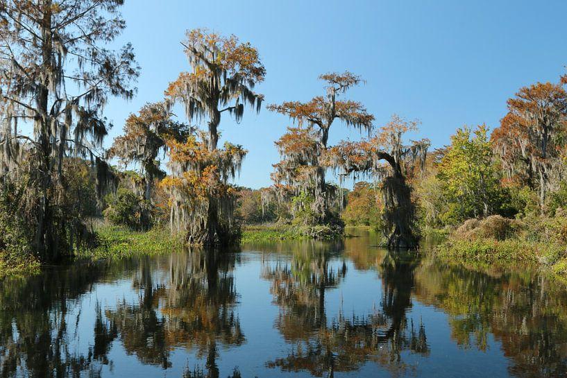 Wakulla Springs, Florida van Charlotte Bakker