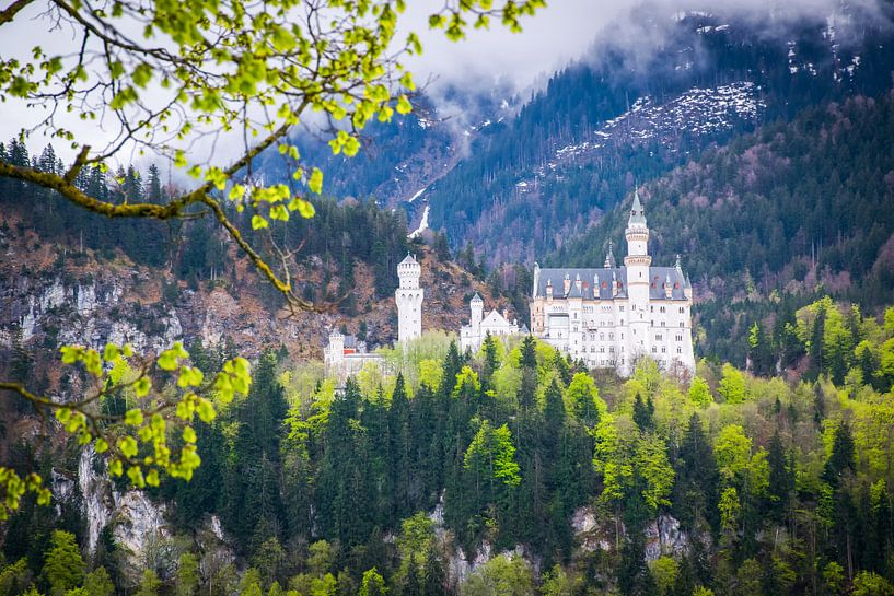 Kasteel Neuschwanstein, Zuid Duitsland  van Rietje Bulthuis
