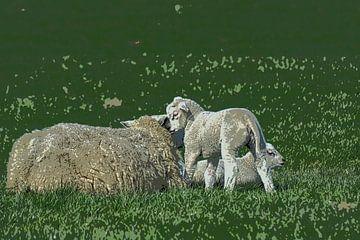 Lamm flüstert in Mamas Ohr (Cartoon) von FotoGraaG Hanneke