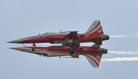 No more Fear of Flying (Patrouille de Suisse) van Tineke Visscher