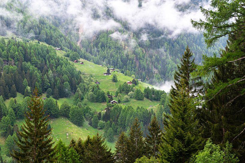 Bergweide in Zwitserland van Ingrid Aanen