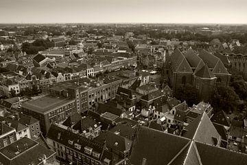 Zwolle vanaf de Peperbus van mono chromie