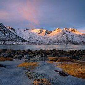Prachtige zonsopkomst op Senja in Noorwegen. van Jos Pannekoek