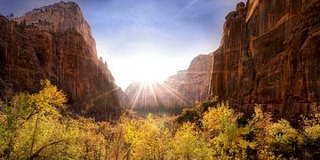 Weeping Rock im Zion Nationalpark USA von Voss Fine Art Fotografie