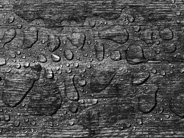 Planke und Wasser von Jörg Hausmann