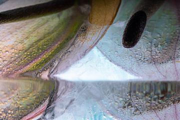 Anthurium in kristalhelder ijs 1 van Marc Heiligenstein