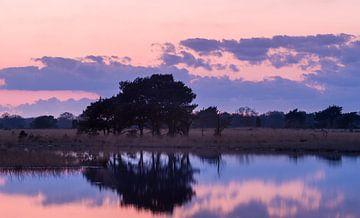 Strabrechtse Heide 200 van Deshamer