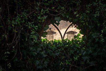 Raam in tuinhuis van Wouter Bos
