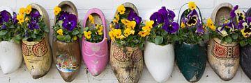 Klompen met bloemen van Hilda Weges