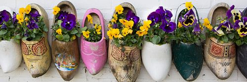 Klompen met bloemen