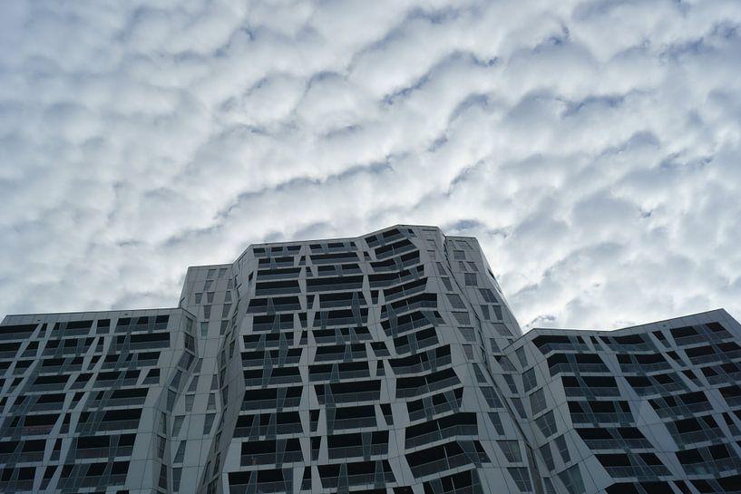 Calypso Rotterdam van Michel van Kooten