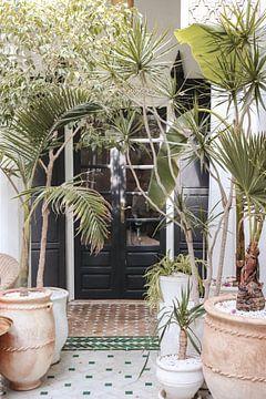Prachtige Entree Met Tropische Planten In Marrakech, Marokko van Henrike Schenk