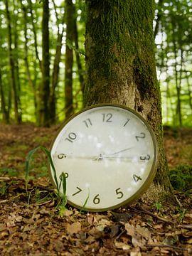 Uhrwald 1 von Jörg Hausmann