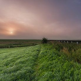 Misty Shock Land Provinz Flevoland von Adrian Visser