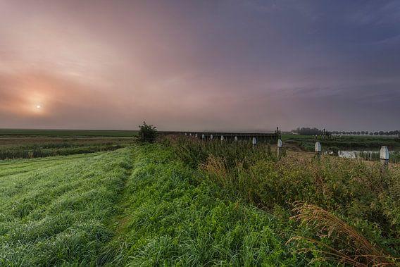 Mistig Schokland provincie Flevoland