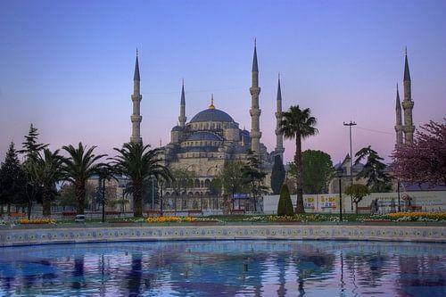 De Blauwe Moskee tijdens een paarse ochtend