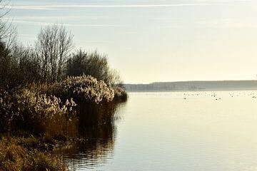 Seelandschaft von Marcel Ethner