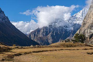 Offene Grasebene Himalaya-Ebene Nepal von Tessa Louwerens
