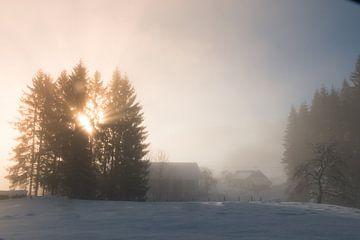 Winter-Nebel von Mariette Alders