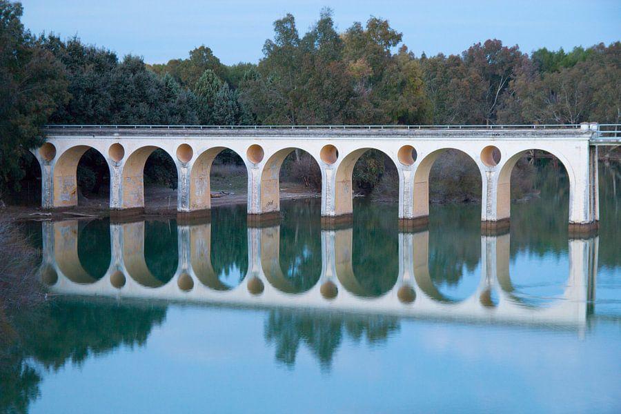 Oval Bridge van Cornelis (Cees) Cornelissen