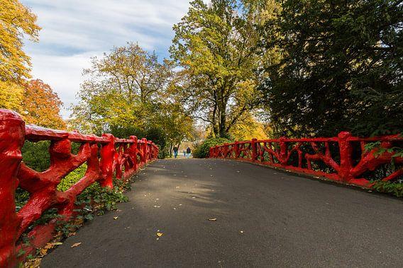 Rode Brug Stadspark Valkenberg van Jean-Paul Wagemakers