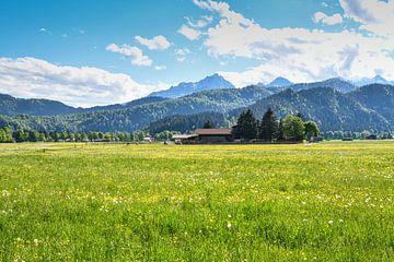 Weiland met boerderij en de Alpen op de achtergrond van Robert Styppa