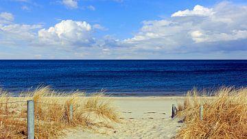 Strandaufgang im März sur Ostsee Bilder