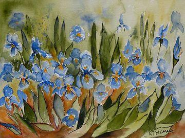 Blaue Iris von Rita Tielemans