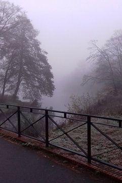 Mistige ochtend, Zuiderpark van