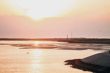 Dutch shores sur Brian Morgan