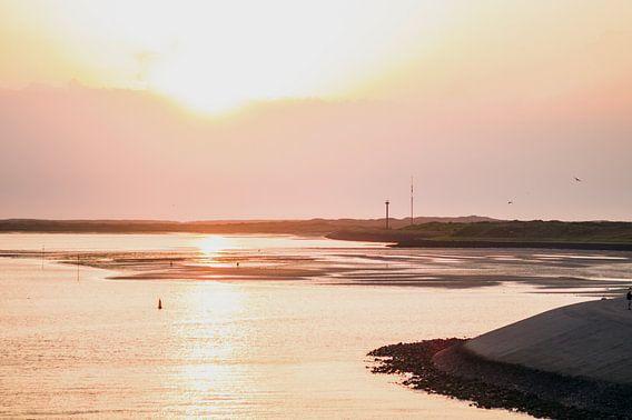 Dutch shores van Brian Morgan