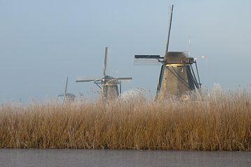 Molens bij Kinderdijk von Bert van Wijk