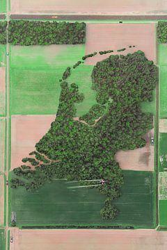 Die Niederlande als Wald von Elianne van Turennout