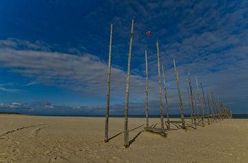Steiger op het strand van Wim van der Geest
