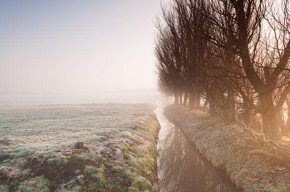 Misty Morning at Leidschendam - 2 van Damien Franscoise