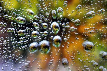 Regendruppels op het raam / Raindrops on a window van Henk de Boer