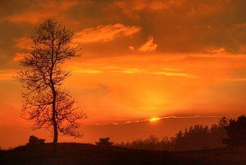 Appelscha - zonsondergang Kale Duinen | Aekingerzand van Meindert van Dijk