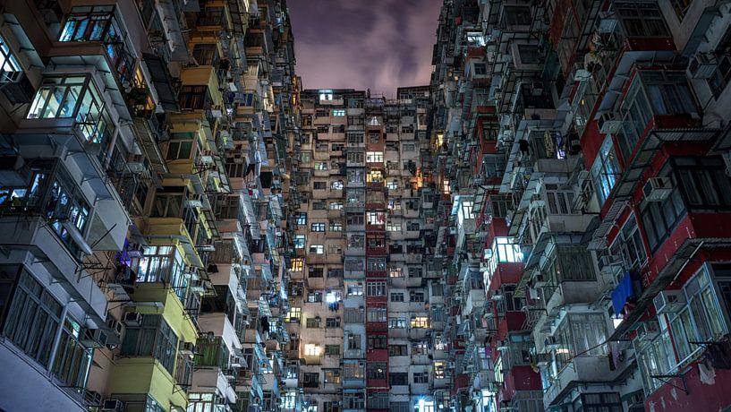 Hongkong hive van Remco van Adrichem